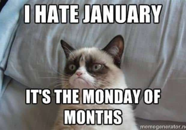 Hate January Meme